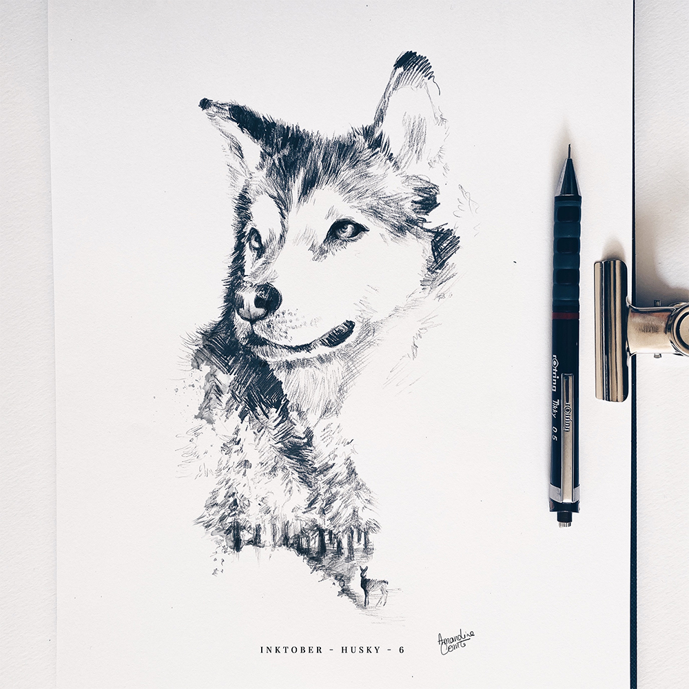 Illustration au crayon d'un Husky